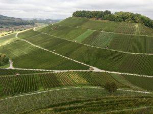 Weinhänge von Weinsberg